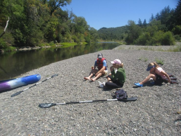 Picnic in the Russian River Valley