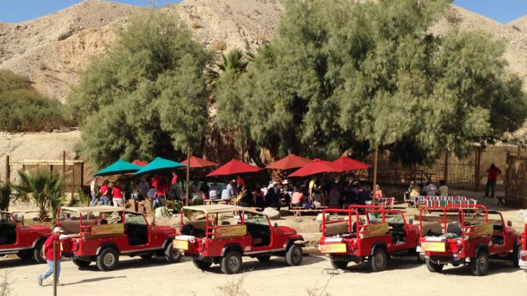 Red Jeep Tours in Palm Springs