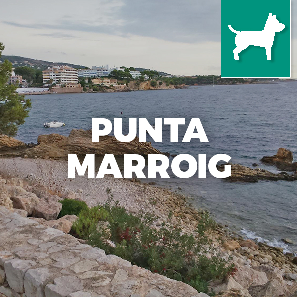 Playa de PUNTA MARROIG-banner