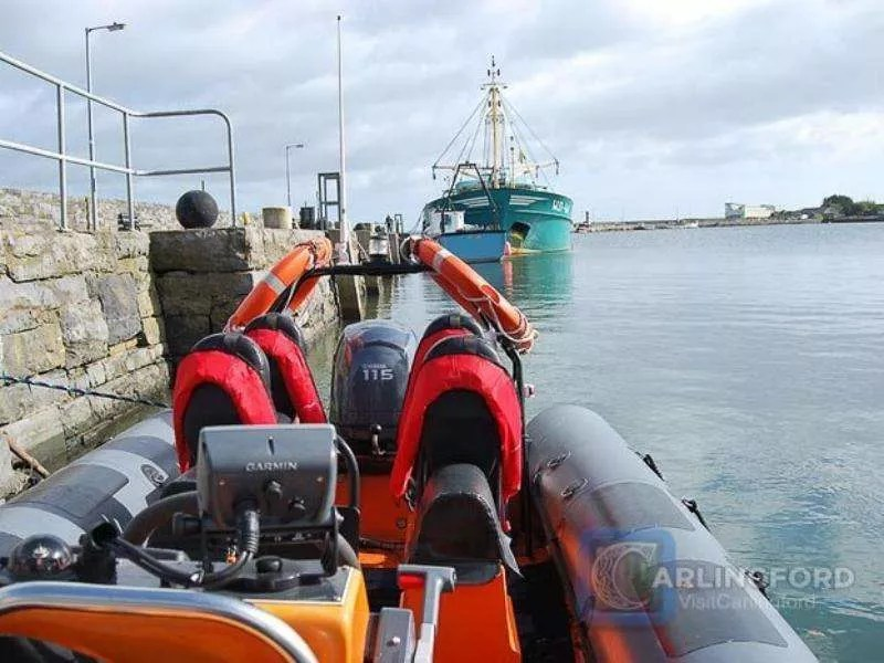 Boat-Trip-Carlingford-Lough-Boating-Trips