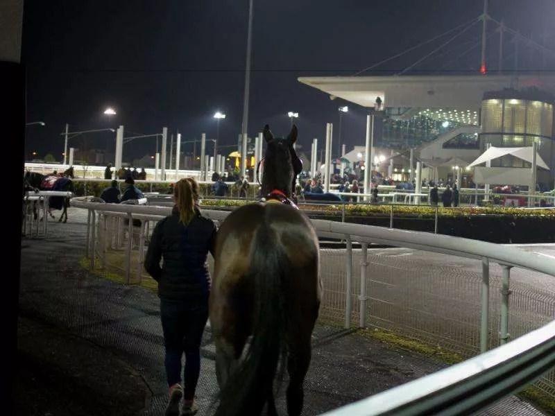 Race-night3