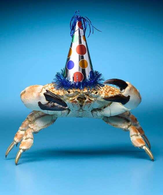 New Year's Eve Crab Pot Drop & Bonfire