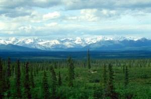 AlaskaTundra