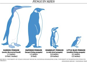 GiantPenguins