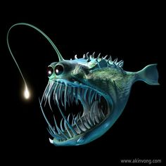 Batfish05
