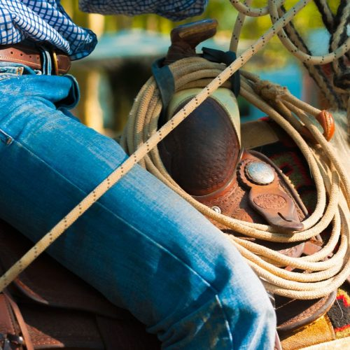 Rancher In The Saddle handling rope