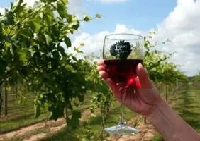 Laytons Chance Winery & Vineyard