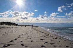 Miles upon miles of pristine beaches in the Jæren #regionstavanger Photos by: Carmen Cristina Carpio Tobar / Kjell Anders Pettersen