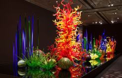 Chihuly Garden and Glass : Galerias