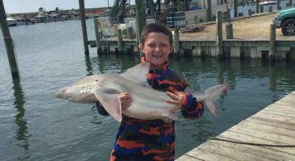 captain petes fish tales