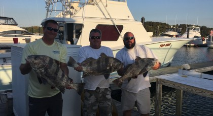 top dog charters