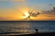 Un enfant sur la plage de Liro d'où l'on peut voir les volcans d'Ambrym, et qui offre chaque soir de superbes couchers de soleil.