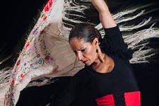 Flamenco Albaycín