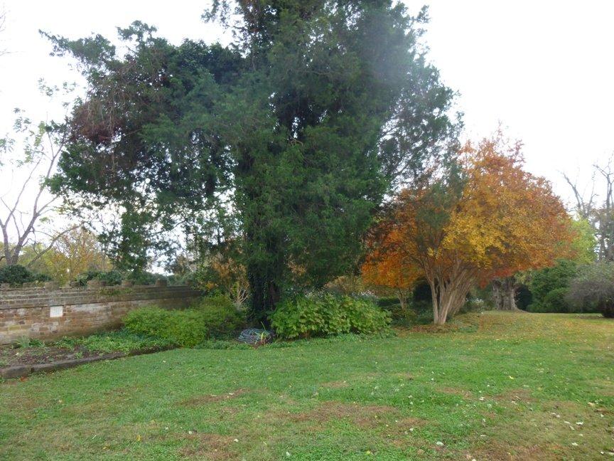 fall blog 3