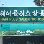Hair Plus Salon LA