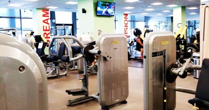 Wilfit Gym machines