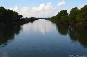 canal parc natural de s'Albufera