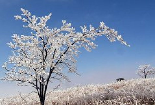 高ボッチ山 《冬期》