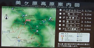 王ヶ頭(百曲りコース・アルプス展望コース)