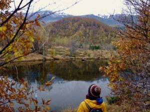 Catching the End of Fall in Norikura Highlands