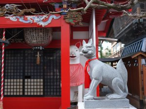 Kasamori Inari Shrine