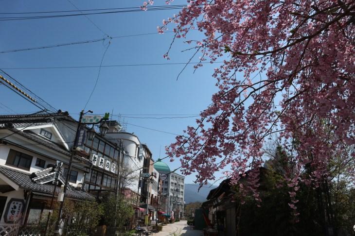 2018-4-4ナワテ通り枝垂れ桜3