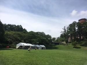 春の自然観察会 山と自然博物館
