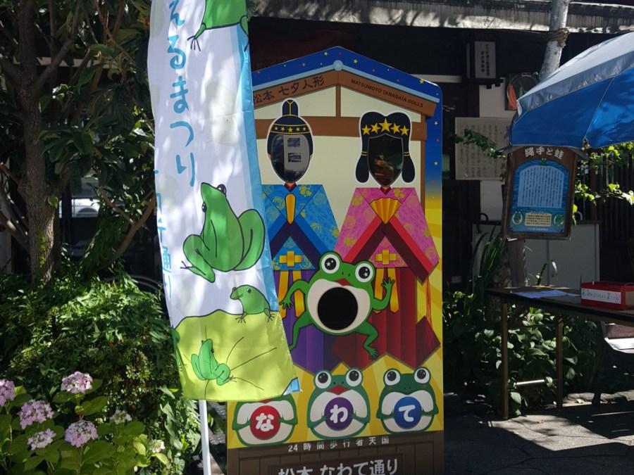 Nawate Street Frog Festival