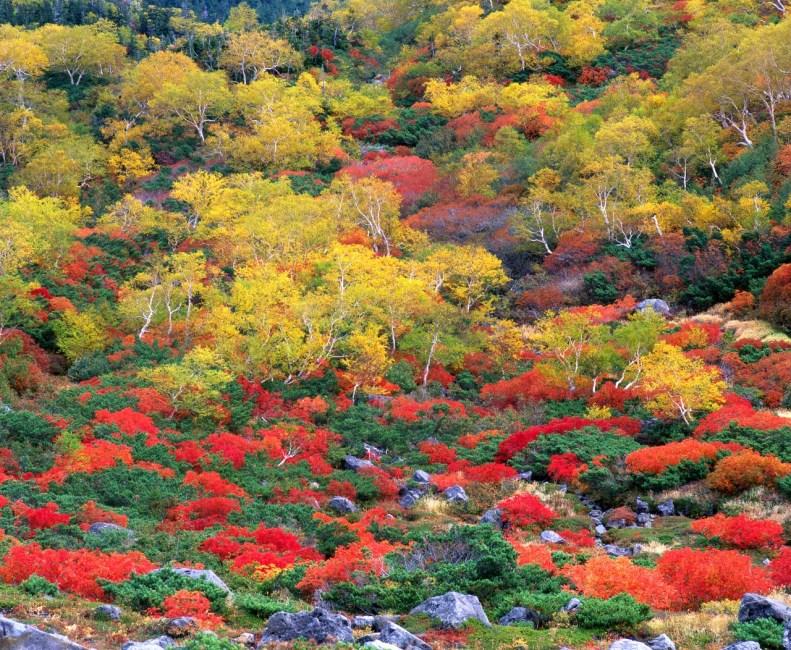 Mt. Norikuradake (Kuraigahara - Sanbondaki  Falls)