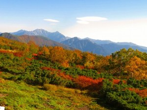 Mt. Norikuradake is full of fall colors already!