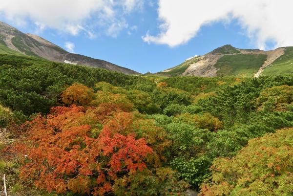 乗鞍岳山頂方面の紅葉が始まっています!!