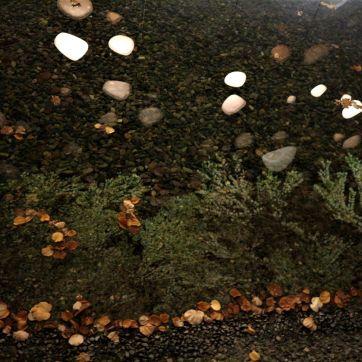まつもと市民芸術館落ち葉と水