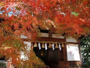 松本街中紅葉情報 見頃です!