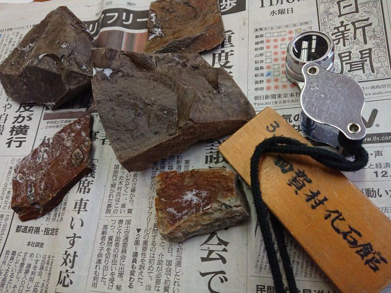 遥か彼方 地層時代の痕跡を探しに~大人の化石教室に参加しました