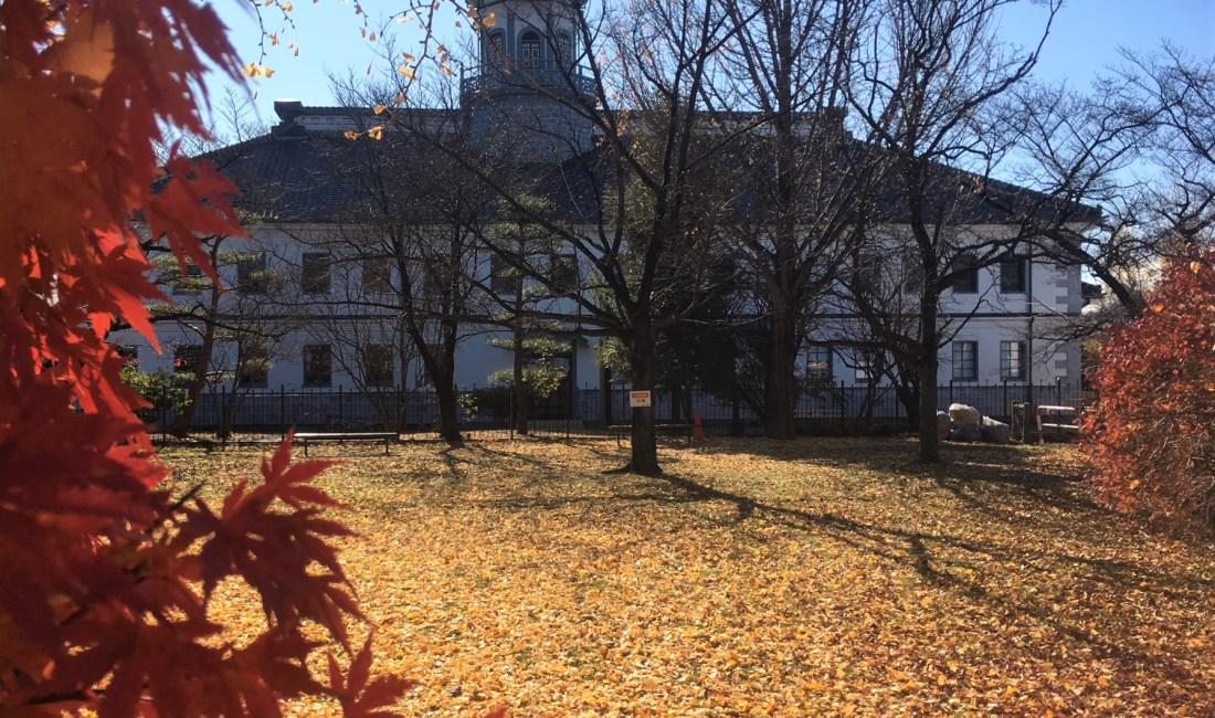 銀杏の絨毯 国宝旧開智学校校舎周辺