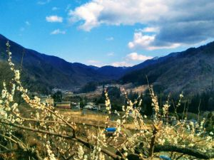 Social Distancing in the Hills of Matsumoto