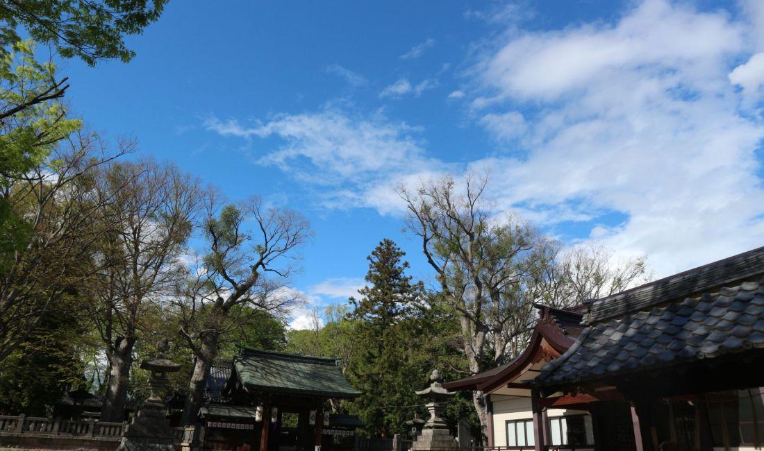 #おうちで松本 春祭りも中止されましたが、新緑は美しい夏日の松本