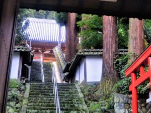 Kotaku-ji: Quiet Temple, Cool Details