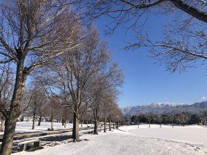 ปีนี้หิมะตกเร็วกว่าทุกปี