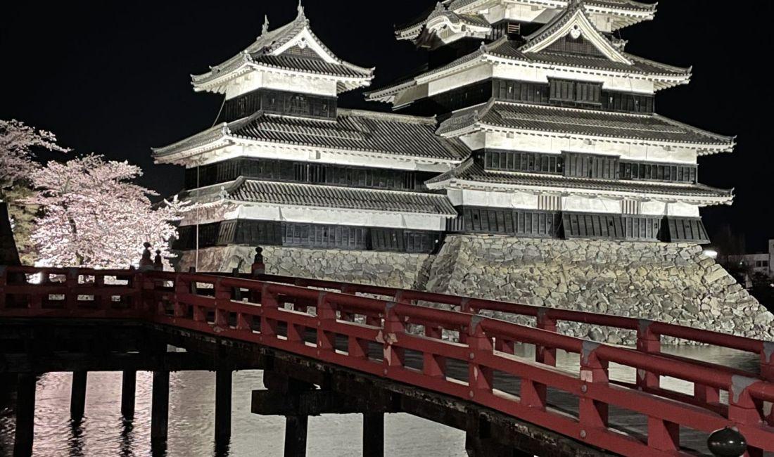 松本城の桜並木光の回廊 夜桜満開
