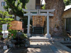 まつもと湧水巡り「槻井泉神社」と「湧水」と「欅」