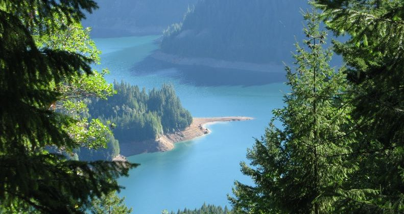 Cougar Lake from O'Leary Loop trail
