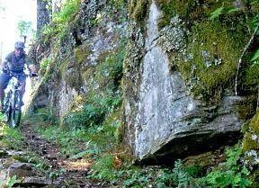 O'Leary Loop Trail