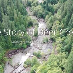 deer creek restoration - mckenzie river, Oregon