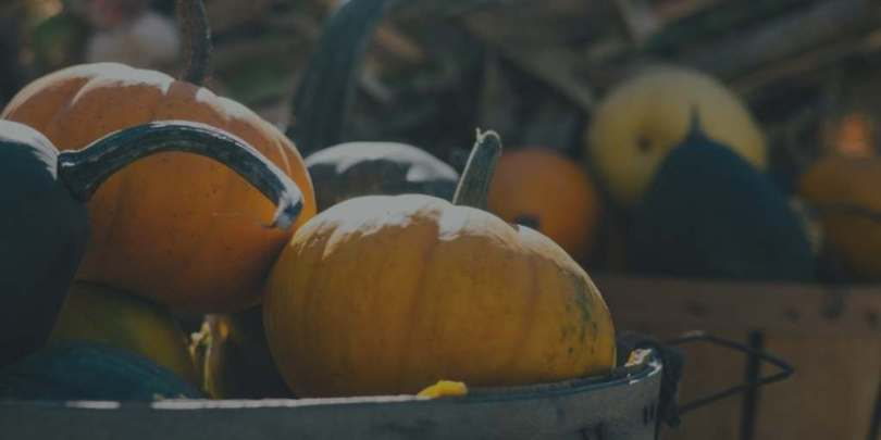 Pumpkins in baskets