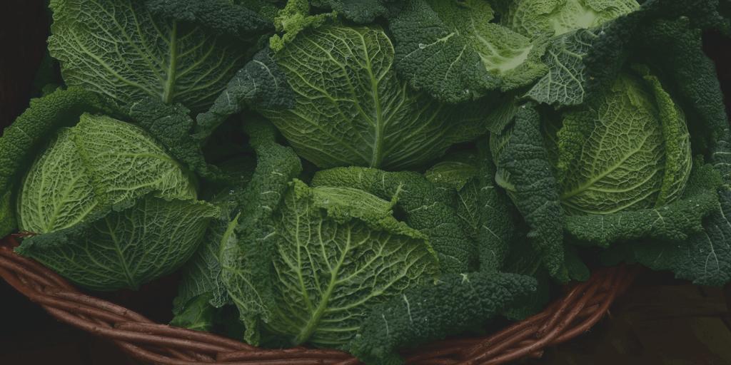 Basket of cabbage