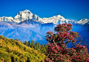 A hill from where you can see an awesome view of Annapurna range. At 3,210 meters, the Poon Hill sunrise view of the snowy rugged Annapurna Himalaya range worth every grueling step it takes to get there!