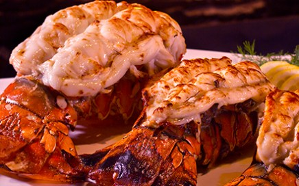 Fine Dining in North County - The Lobster Night - dining experiences for every taste