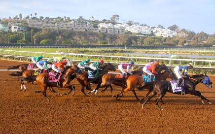 Horse Race Track in San Diego