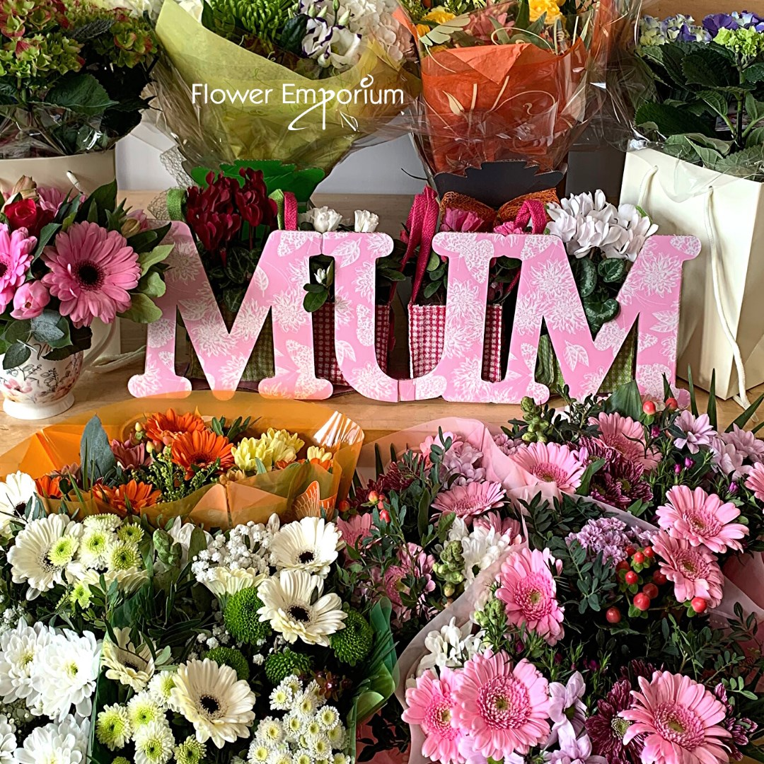 Flower Emporium Mum